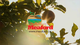 Meaford Intro Promo - Pass the Apple
