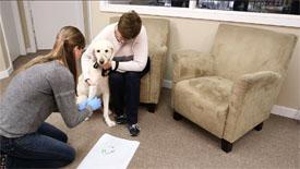 Seroclinix Diagnostic Testing